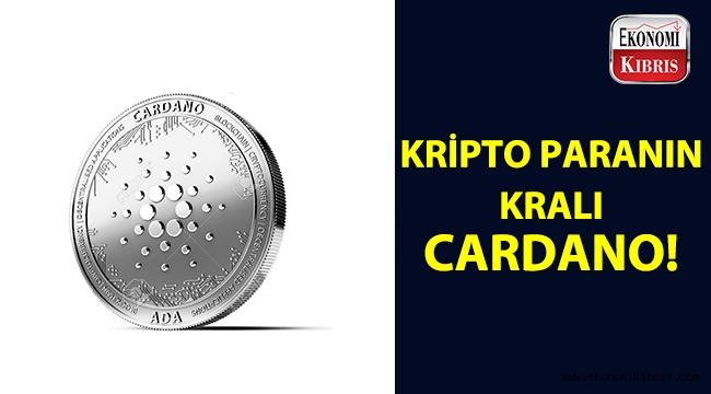 Kripto para dünyasının kralı: Cardano!..