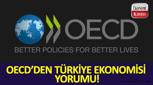 OECD, Türkiye'nin ekonomisiyle ilgili beklentilerini açıkladı...