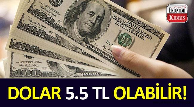 Dolar 5.5 TL'yi aşabilir!