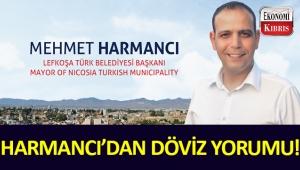 LTB Başkanı Mehmet Harmancı'dan döviz açıklaması!..