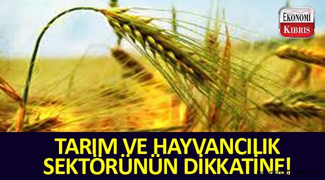 Tarım ve hayvancılığa yatırım ve işletme kredisi!