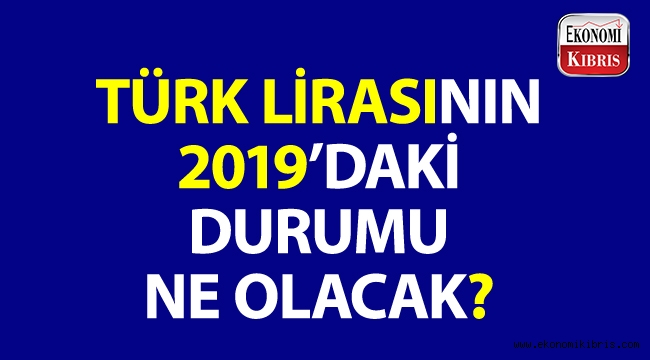 Analistlerden Türk lirası yorumu! TL'nin 2019'daki durumu ne olacak?