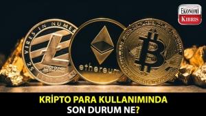 Kripto para fiyatları düşerken, kullanıcı sayısındaki vaziyet nasıl?