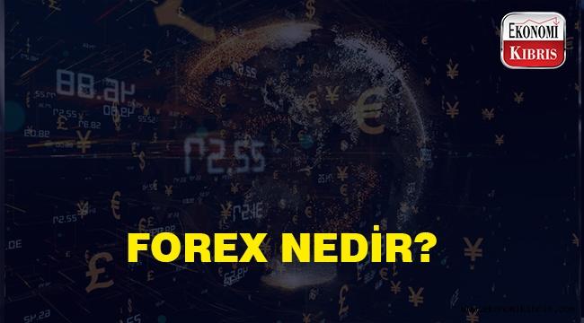 Forex Haberleri | Forex Haber - Haberler