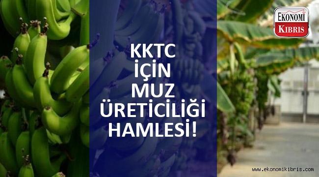 Başbakan Ersin Tatar'dan KKTC'de muz üretimini geliştirme mesajı!