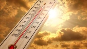 Dünya tarihinin en sıcak sonbaharı yaşanıyor.İşte detaylar...