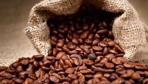 Kahve atıklarından otomobil parçası üretilecek. İşte detaylar...