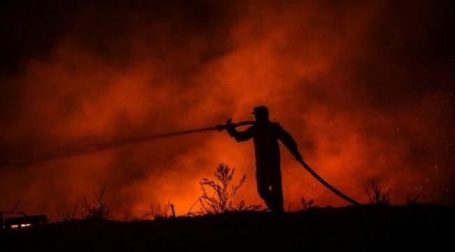 Yangınlarla Boğuşan Türkiye İçin 'Global Çapta Yardım Çağrısı' Başlatıldı! İşte detaylar...