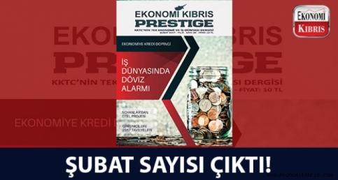Ekonomi Kıbrıs Prestige - Şubat Sayısı
